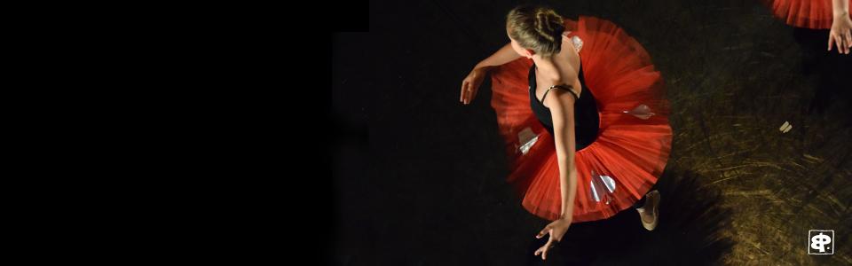 Auteur Photographe photos danse spectacle